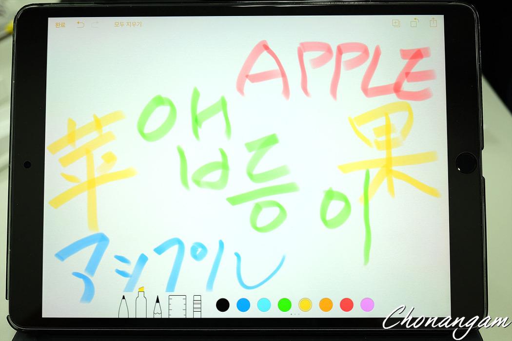 APPLE iPAD PRO 10.5(256G LTE)