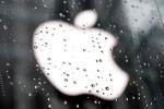 애플 법칙에 빨려드는 IT업계 - [한겨레]