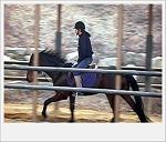 [승마] 말(馬) 달리자~ 말(馬)~말(馬)~말(馬)~!! (8)