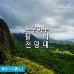 하와이 오아후 여행 : 누우아누 팔리 전망대 & 카메하메하 대왕 동상