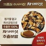 차가버섯복용법, 올바른정보를 체크!