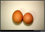 왕란, 특란, 대란...계란(달걀)의 크기 구별은 어떻게 할까?