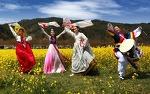 삼척유채꽃축제인 삼척맹방유채꽃축제에서 봄꽃여행 만끽하세요