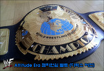 WWF Attitude era 챔피언쉽 벨트 (디럭스 버전)