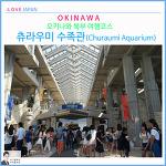 오키나와 북부 여행코스 츄라우미 수족관 사람많아.입장료