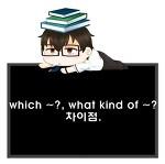의문문, which ~와 what kind of ~의 차이.