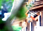 [이천소식][창전동] 초보동장의 하루(14) - 창전동 글판, 이 여름에는