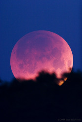 개기월식 (Total Lunar Eclipse)