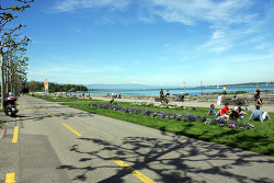 Geneva_Lake Leman & Tram road
