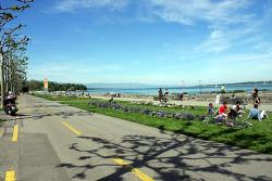 Geneva_Lake Leman & Tram road