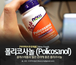 아이허브 폴리코사놀, 콜레스테롤과 혈관에 좋은 나우 폴리코사놀