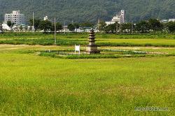 경북 예천 개심사지오층석탑 (보물 제53호)