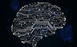 앨런머스크의 인간 도태를 막는 것에 도움을 주기 위해 뇌에 삽입하는 AI 뉴럴 레이스(Neural Lace) 플랜