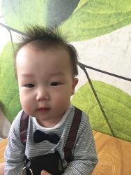 아기 여권 만드는 방법 (준비물 포함)