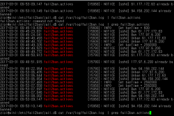 Ubuntu ssh 해킹 방지 대책, 로그보기