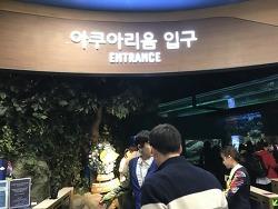 롯데월드 아쿠아리움 삼성카드 35% 대박 할인!