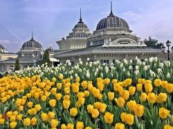 에버랜드 튤립축제로 봄 나들이 제대로 즐기기