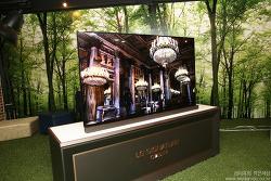 LG OLED UHD TV 차원이 다른 퍼펙트HDR 시대 열다. LG OLED55E6K 화질 감동.