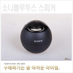 소니 블루투스 스피커 SRS-BTV5, 돈 주고 사긴 아깝다.