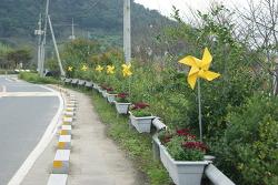 누런 논밭사이로 시원하게 달려보는 김해 봉하마을 대통령의 자전거길