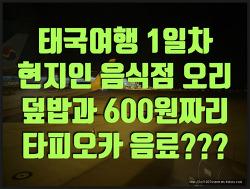 태국 여행기 D-1 방콕 현지인 오리덮밥과 600원짜리 버블티??