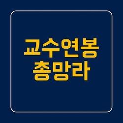 교수연봉(월급,전임,조교수,국립대,사립대 총망라)