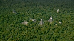 Laser Mapping Unearths 60,000 Ancient Maya Structures in Guatemalan Jungle