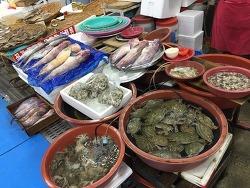 물메기의 계절 - 서천특화시장 물메기 판매