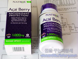 항산화 작용이 좋은 아이허브 Natrol 아사이 베리 1,000 mg