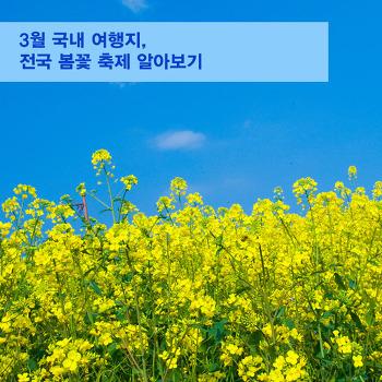 3월 국내여행지 추천, 전국 봄꽃축제 알아보기