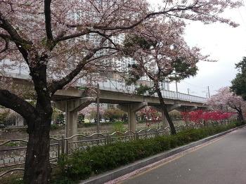 봄맞이 야유회~