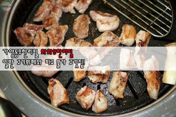 가양동무한리필 화화무한리필, 일반 고기뷔페와 비교 불가 고깃집!