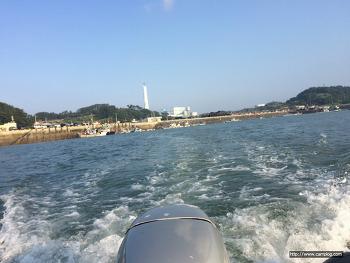 바다낚시 비응항 보팅낚시 조행기 조과 백조기 부세 조기 쭈꾸미 골뱅이 숭어