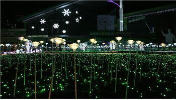 고양호수꽃빛축제(Goyang Light Blooming Festival)2016