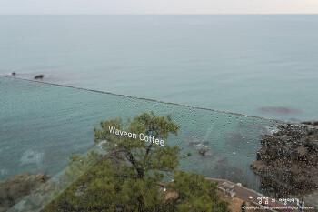부산 기장 카페 웨이브온, 바다 전망이 멋진 부산 핫플