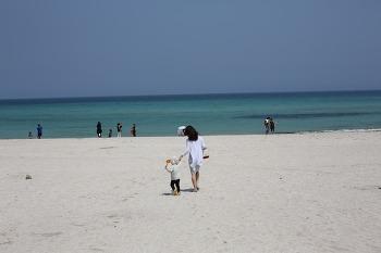 [제주도 여행] 함덕서우봉해변 다녀왔습니다.