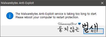 자동 업데이트 후 정상 동작하지 않는 Malwarebytes Anti-Exploit 문제 (2016.12.18)