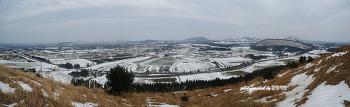 제주의 겨울 풍경