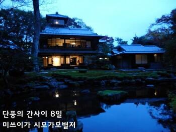단풍의 간사이 - 8일 교토 라쿠호쿠2 (미쓰이가 시모가와별저旧三井家下鴨別邸)