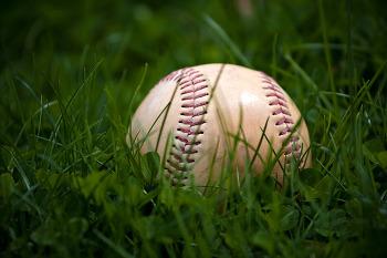 야구팬들을 웃고 울리는 '스트라이크존'