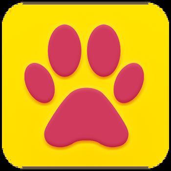 강아지 고양이 놀아주기 앱 - 펫스튜디오 업데이트 소개