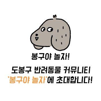 도봉구 반려동물 커뮤니티 <봉구야놀자>