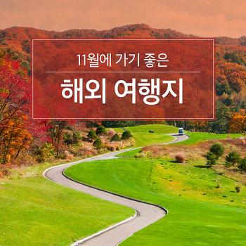 11월에 가기 좋은 해외 여행지 추천!