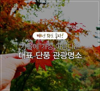 단풍여행지 추천! 가을의 색을 만끽할 수 있는 전국 단풍 명소