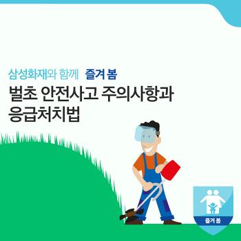 안전한 추석을 위한 벌초 안전사고 주의사항과 응급처치법 [화제집중]