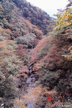 Local Tour - 신선봉, 소백산('17.10.13-10.15.)