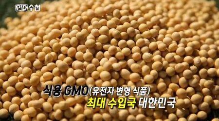 MBC PD수첩 'GMO 그리고 거짓말?' 편