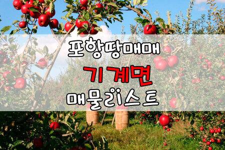 ▣포항땅매매▣ 기계면 토지매매, 임야매매, 농지매매 12월8일 땅매매 목록