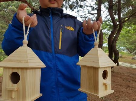 바람의 똥꾸를 찌른 솔숲에 '어디에 새집을 달면 좋을까?'