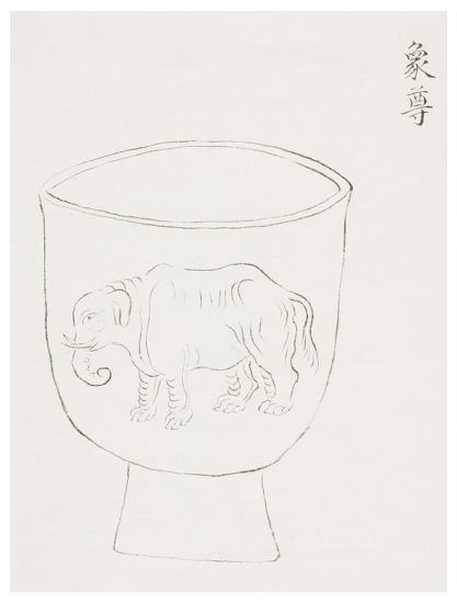 하얀 코끼리와 코끼리 유배사건